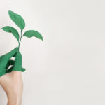 Greenwashing Reduces Effect of Market Feedback on Buying Green